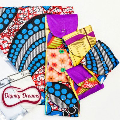 Dignity Dreams Washable Pads Pack with Panties